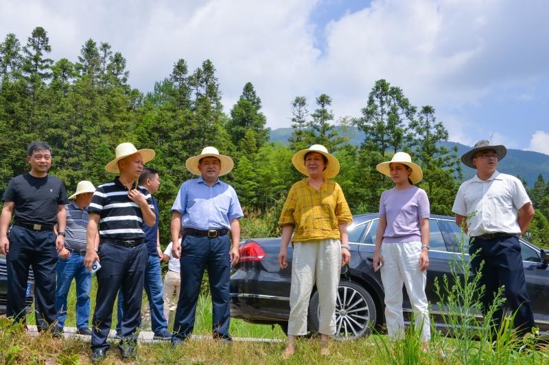 學院主要領導與市人大常委會副主任廖美琳赴汝城開展鄉村振興工作調研